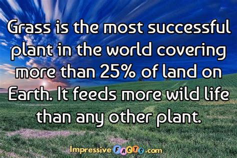 grass is the most successful impressivefacts com