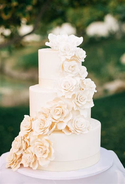 Wedding Cake Ideas by 25 Best Ideas About White Wedding Cakes On