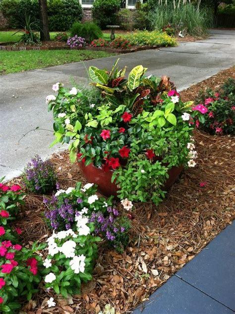 shrubs for flower beds potted plants flower beds