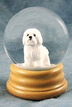 woodland havanese puppies 1000 images about snow globes on snow globes musical snow globes and
