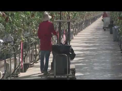 Idealife Kaleng Pengharum Il 104s penghisap debu jalan raya perkotaan doovi