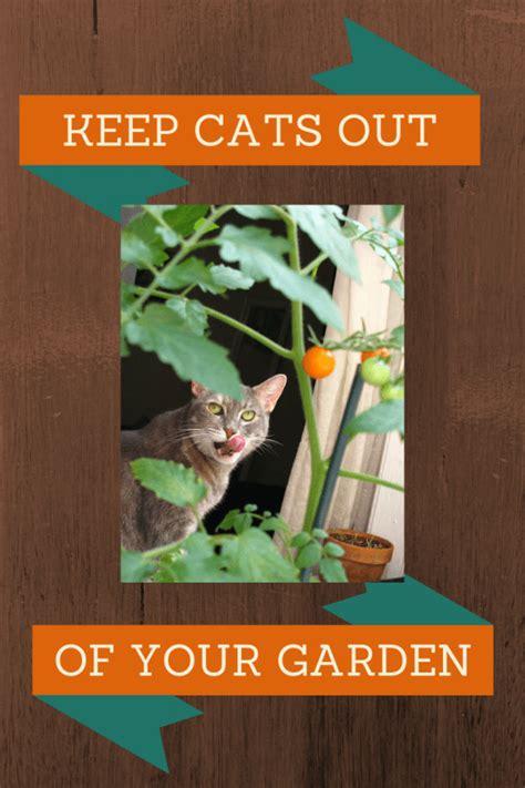 humane ways   cats    garden