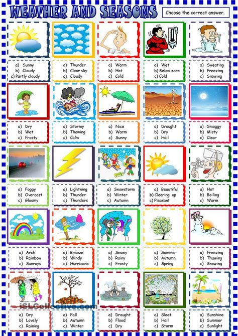 themes in sports literature multiple choice worksheets on theme 1000 images about