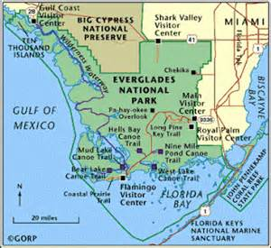 my in the florida and beyond everglades