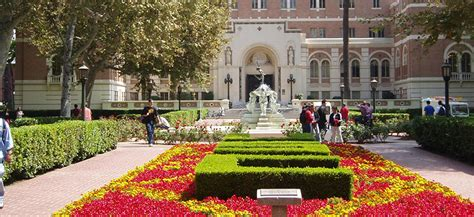 Usc Columbia Mba Tuition by Of Southern California Academic Network
