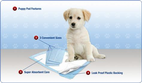 how to a to use puppy pads features of puppy pads mednet direct