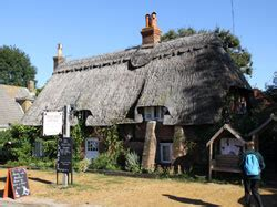 Cottages In New Forest For Breaks by Breaks In The New Forest