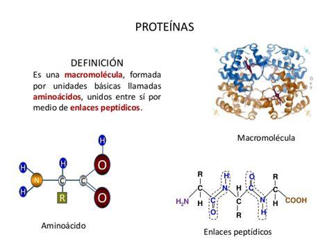 proteinas y aminoacidos aminoacidos y proteinas