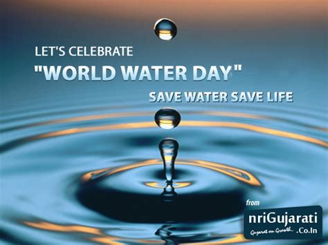 when is day celebrated in the world world water day date in india when is world water day