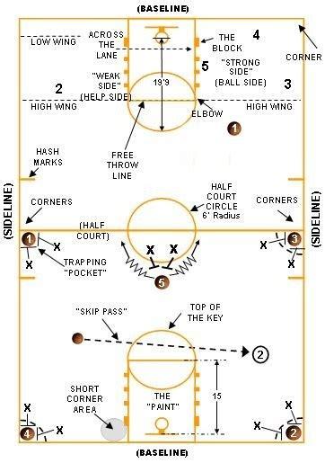 basketball court dimensions diagram basketball court dimensions avcss basketball