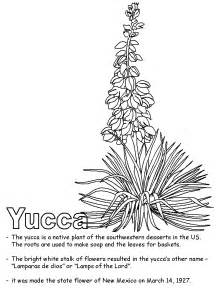 coloring pages of mexican flowers search