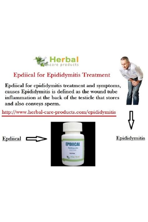 herbal care products suits quot epididymitis treatment by