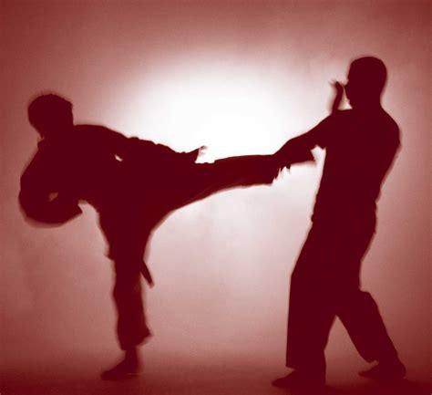 martial arts iconic martial arts photos page 3 black belt forums