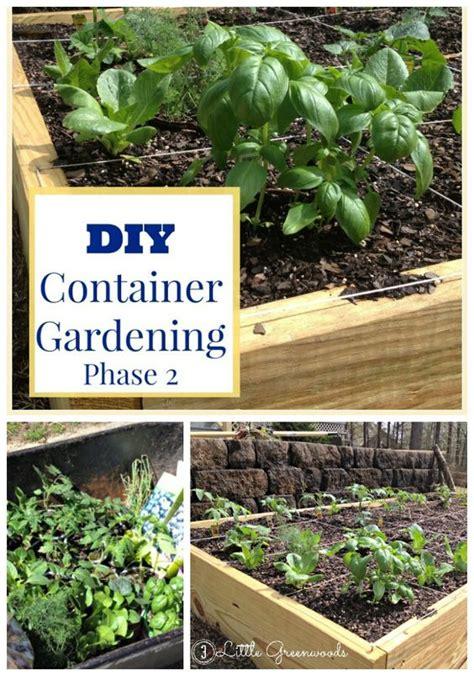 Diy Container Garden Planning And Planting Pinterest Diy Vegetable Garden