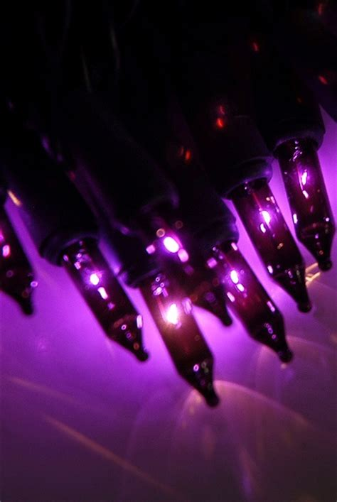 Ms Glow Original By Merry Fashion 77 best images about purple tree lights on