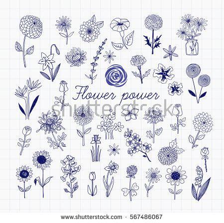 pen doodle vector collection flowers plants monochrome stock