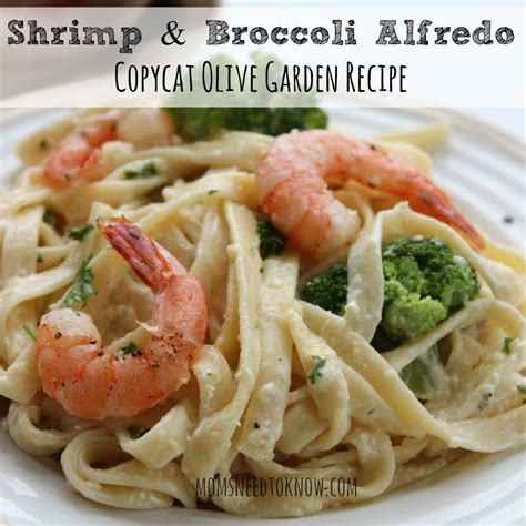 Shrimp Fettuccine Alfredo Recipe Olive Garden by Olive Garden Shrimp Alfredo Recipe