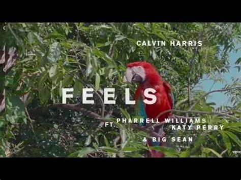 download mp3 feels pharrell lyrics calvin harris feels ft pharrel williams katy