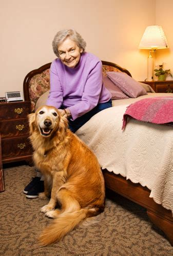 the caregiver partnership age in place home design the caregiver partnership aging in place 3 important