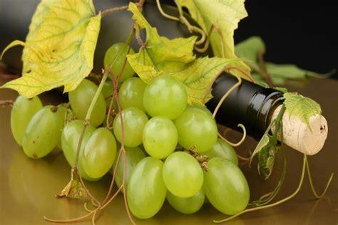 uvas blancas imagenes uvas blancas y una botella de vino 7801