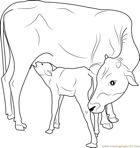 coloring pages of cow and calf indian cow with calf printable coloring page for kids and