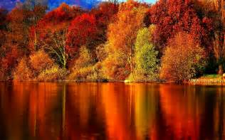 Autumn wallpaper autumn