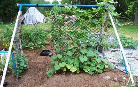 Trellis Gardening Ideas Vegetable Garden Trellis Ideas Inexpensive What Are Some Cheap Ideas For Trellis S