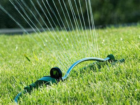 Garden Hose Sprinkler Proper Lawn Watering T T Landscaping