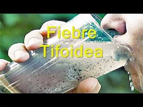 hay imagenes artisticas que producen desagrado 10 enfermedades causadas por tomar agua contaminada youtube