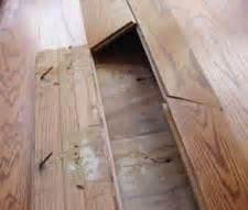 Hardwood Floor Water Damage Repair in Tampa, FL