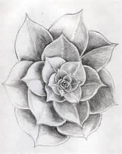 sketsa gambar bunga nan cantik warnagambar
