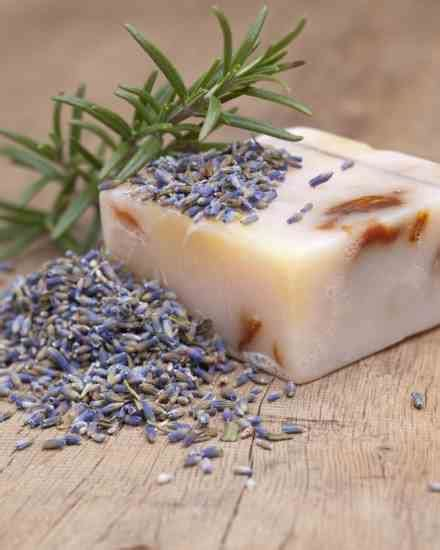 1454930667 the handmade apothecary healing herbal how to make homemade soaps with herbs natural beauty