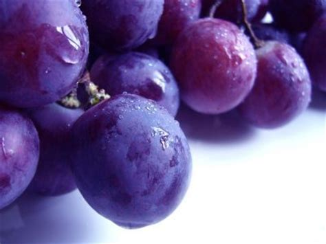 purple fruits and veggies protect brain cells live in the now natural health news natural