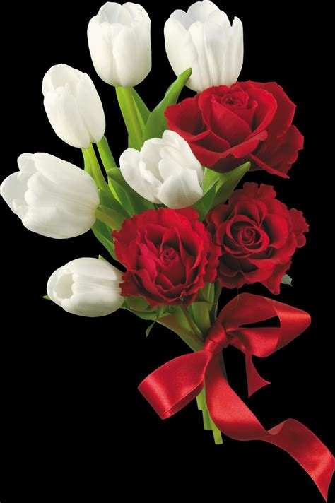 fiore simbolo di speranza kriss graphic significato dei fiori