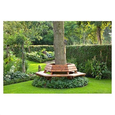 bench around tree trunk gap photos garden plant picture library bench around