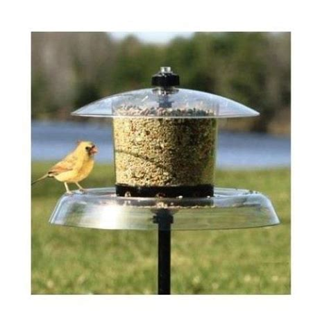 Ground Bird Feeders Squirrel Proof droll yankees jagunda squirrel proof bird feeder with pole ground auger