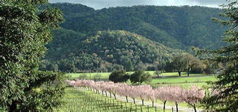wineries in gilroy and hill santa clara vineyards california winery advisor