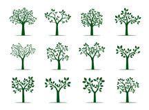Baum Mit Roten Bl Ttern 136 by Baum Mit Wurzeln Und Bl 228 Ttern Stock Abbildung