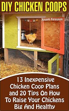 how to have chickens in your backyard 1000 ideas about duck coop on pinterest duck house