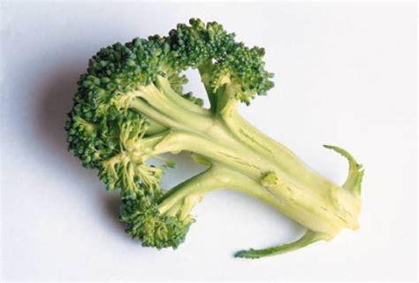 7 vegetables that burn top 15 burning foods you should be