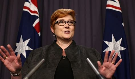 marise payne marise payne and her quest afr