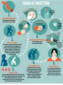 Hutch Artist Chain Of Infection Infographic Cornelia Svela
