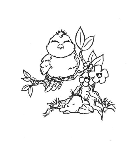 printable coloring pages of birds and flowers image detail for for kids and adults printable bird