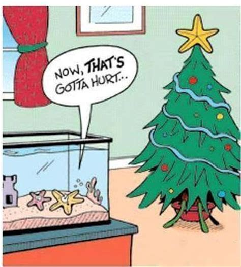 funny christmas star cartoon jokes memes pictures
