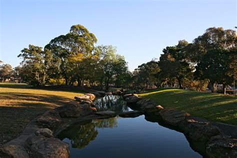 wiley park new south wales familypedia