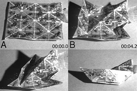 Self Folding Paper - mit harvard researchers create programmable self folding