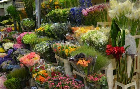 mercato dei fiori via trionfale 45 the best markets in rome