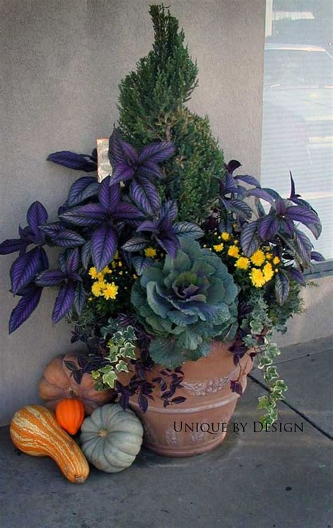 fall container garden fall container gardening gardening and garden delights