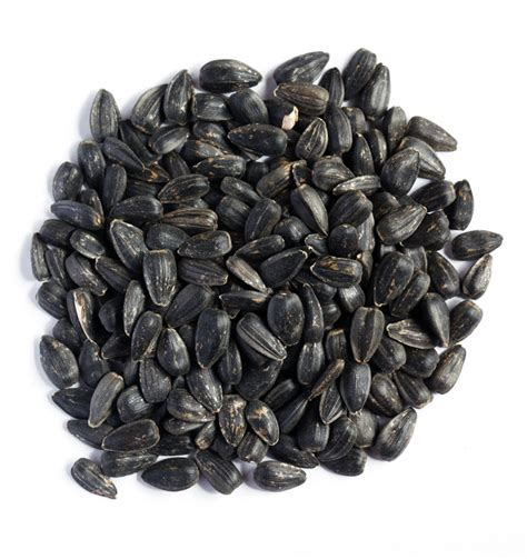 organic sunflower seeds sprouting only kialla foods