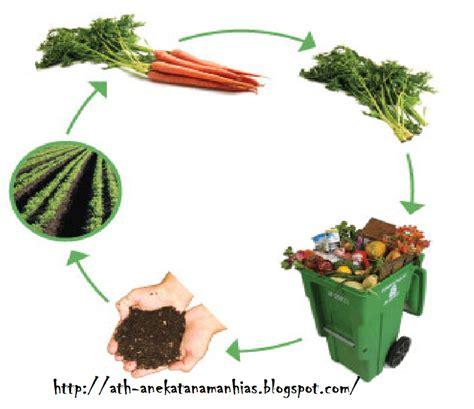 Pupuk Organik Kompos Dari Sah pembuatan pupuk kompos dari sah rumah tangga